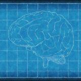 忘却曲線で分かる!効率的な記憶の仕組みと暗記のコツ
