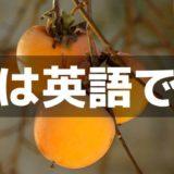 柿は英語で?外国でも食べるの?干し柿や渋柿などの英語